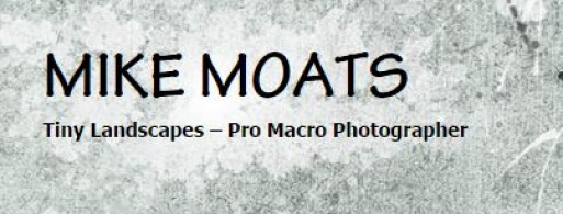 MIKE MOATS MACRO PHOTOGRAPHY