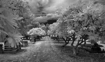 How to Enhance your Black and White images with Infrared Photography