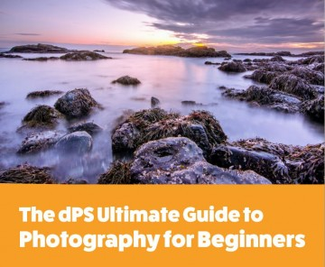 THE ULTIMATE PHOTOGRAPY GUIDE FOR BEGINNERS